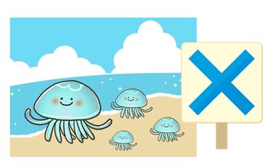 海クラゲ時期6