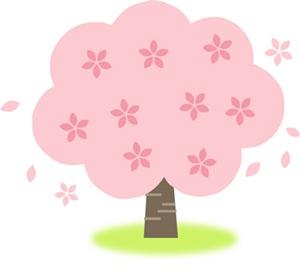 花見を英語で紹介!!花見で絶対使える英語例文はコレ!